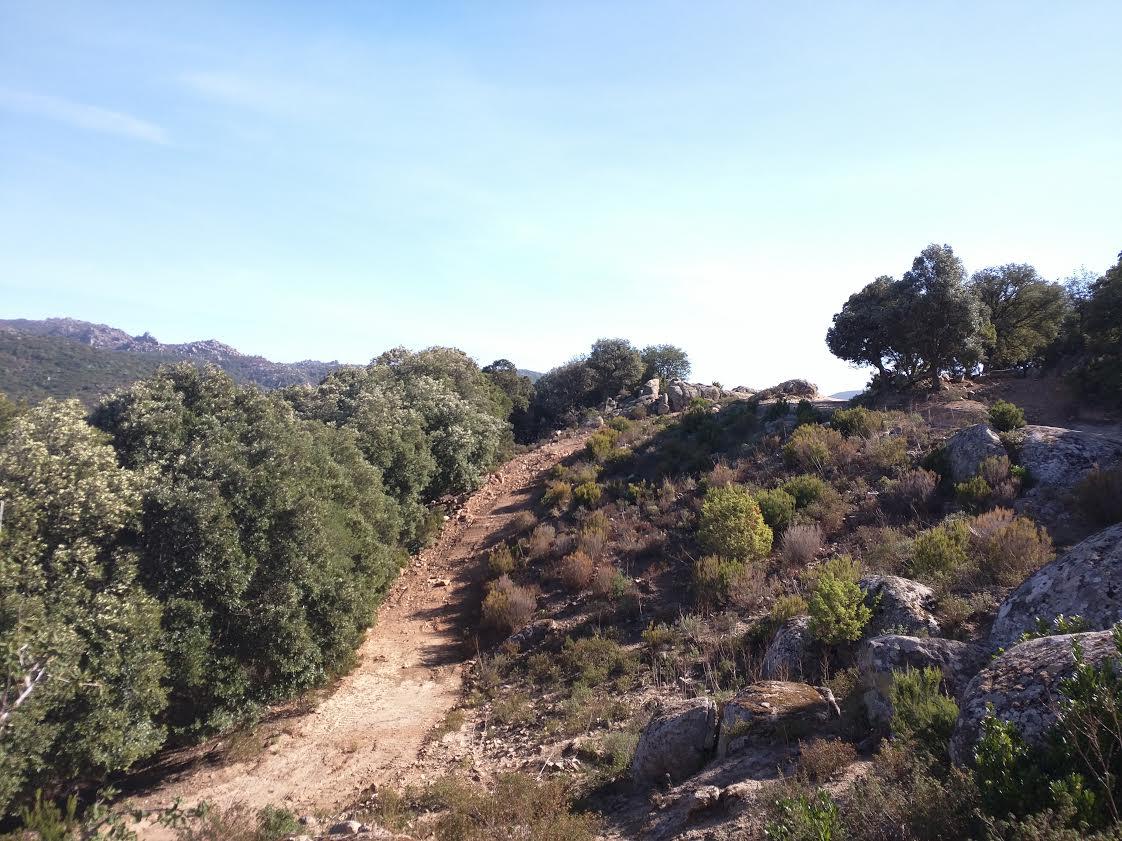 Il Parco dei Sette Fratelli, oasi nel sud-est della Sardegna